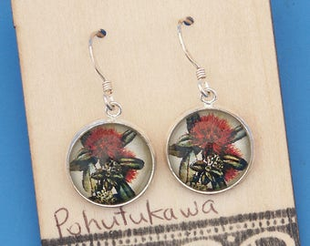 New Zealand Pohutukawa flower, vintage art print, Earrings, glass dome art, sterling silver earring wires