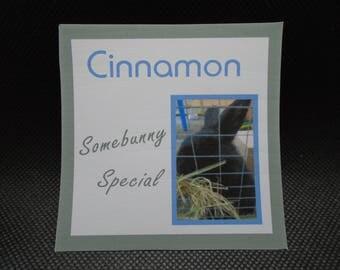 Personalised Bunny Rabbit Photo Coaster Gift