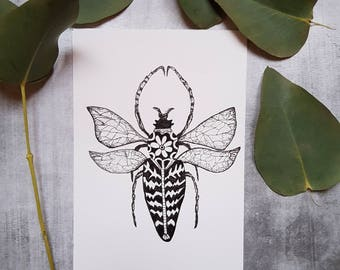 Winged insect card