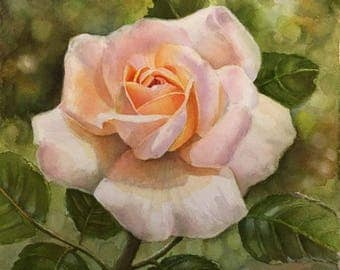 "Apricot Rose - Rose Painting in Watercolor NEW SERIES 10""x10"" in different colours- Original Painting of a apricot rose by Doris Joa"