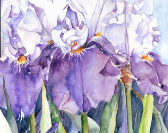 Watercolor Purple and White Iris Trio Original Painting, Irises Wall Hanging, Iris Decor