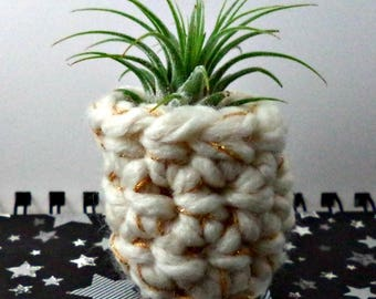 White and Gold Air Plant Pot
