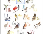 A-Z Bird Poster