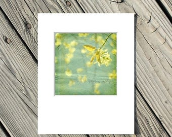 "40% OFF SALE Mint Green, Wall Decor, Nature Photograph, Flowers, Still Life Picture, Yellow, Mint- 5x5 inch Print Matted to 8x10 inches - ""F"