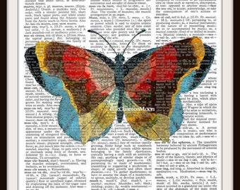 Butterfly Colorful- Dictionary Art Print---Fits 8x10 Mat or Frame