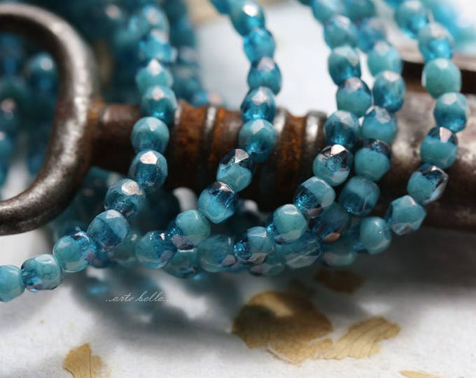 CAPRI OCEAN BITS .. New 50 Premium Picasso Faceted Czech Glass Beads 3mm (5802-st)