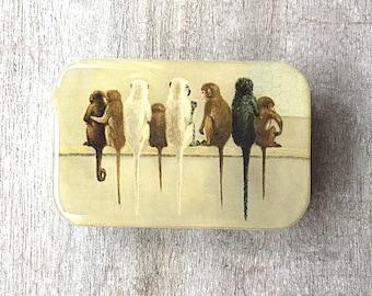 Monkey tin SMALL