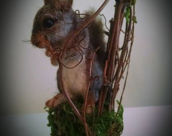 Realistic Little Squirrel w Fairie Woodland Twig Chair OOAK Needle felted Soft Sculpture by Bear Doll Artist Stevi T.