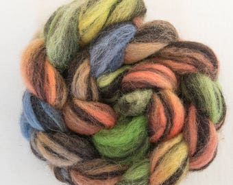 Hand dyed roving, Humbug Jacob, hand dyed Jacob, spindling, Handspinning, felting projects, fibre, felting materials, tops, roving, wet felt