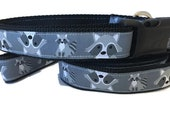 Dog Collar and Leash, Raccoon, 4ft lead, 1 inch wide, adjustable, quick release, metal buckle, chain, martingale, hybrid, nylon