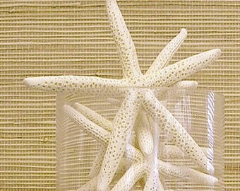 "Starfish - 6""-7"" Set of 15 - bulk star fish wedding coastal beach decor"