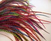 12 grizzly Haar Federn sortiert 8 bis 13 Zoll Haar Federn Handwerk, die Federn fliegen binden Erweiterungen Masse Federn