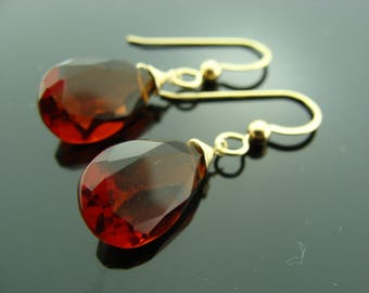 MOZAMBIQUE GARNET 14K Gold Earrings