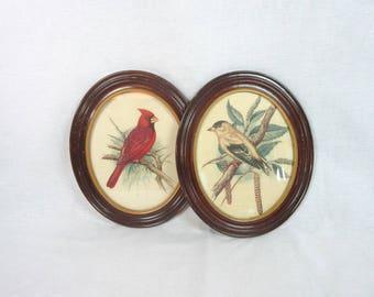 Vintage Oval Framed Gommer Bird Prints Set of Two Illustrations Woodland Cabin Decor