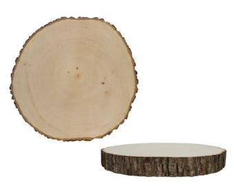 Natural Live Edge Tree Rounds (Cookies)