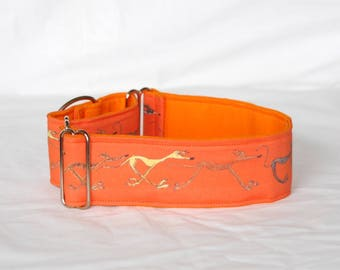 "2"" Martingale Dog Collar Doodle Greyhounds - Orange"