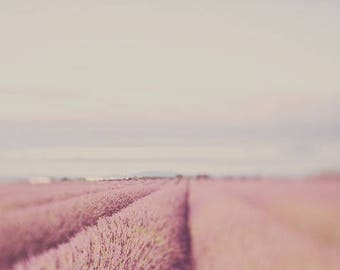 provence photography print, landscape photo, purple wall art, home decor, french style, travel, fine art photography, lavender, lensbaby