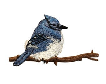 ID 0520 Blue Jay Bird Patch Perch Branch Embroidered Iron On Applique