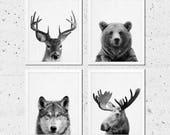 Woodland Animals Print, Animals Print Set of Four, Bear Moose Wolf Deer Photo, Nursery Kids Baby Room Decor, Black White Modern Printable