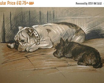SALE Signed mounted 1936 Lucy Dawson Bulldog and scottish terrier dog plate print Card and Print OPTION Unique gift card optional Christmas
