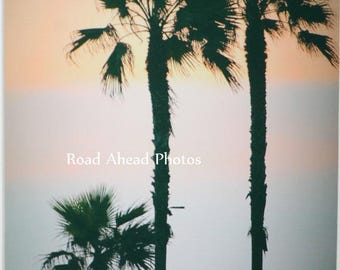 5 x 7 matted photograph palm trees at sunset Huntington Beach photograph