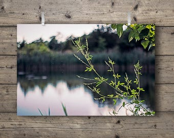 The Lakes No. 2 / Lakeside Series / Tallgrass Prairie Wetlands & Woodlands Nature Photography Print / Outdoors Home Decor / Soft Wall Art