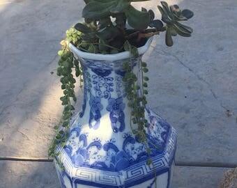 Blue succulent vace