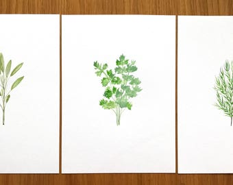 Herbs set of 3 ORIGINAL watercolour paintings Herbs art Parsley Sage Rosemary Kitchen decor one of a kind 3 x (7 x 10inches)