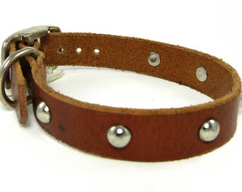 Studded leather collar  *SALE*