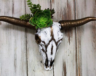Painted Skull-Longhorn Cow Skull Feathered Painted with Succulents-Bronze Wall Decor-Home Decor-Ranchers-Gift