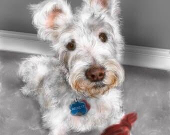 Custom Dog Portrait, pet portrait, custom portrait, dog lover, dog art, pet memorial, retriever, dog memorial, artwork, wall art, art print