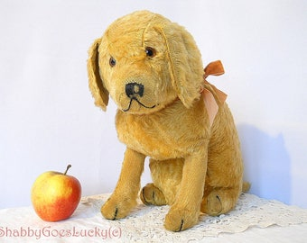 German vintage 1920s toy dog, large sitting golden mohair dog with back painted glass eyes, shabby old stuffed animal home decoration