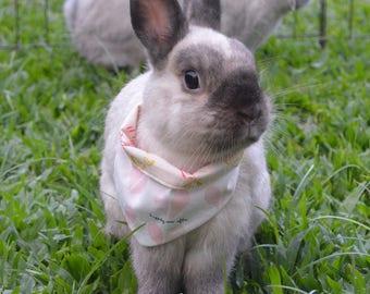 True Love Valentine's Day reversible pet bandana, bunny bandana, small animal accessory, bunny accessory, rabbit clothes, guinea pig clothes