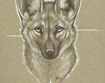 Crux - 5x8, Maned wolf, Maney, wolf, modern, cross, canine, wolves