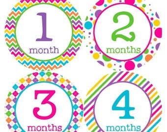 Monthly Baby Stickers Baby Month Stickers Baby Girl Month Stickers Monthly Photo Stickers Monthly Milestone Stickers 198