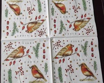 1 Robin bird paper towel