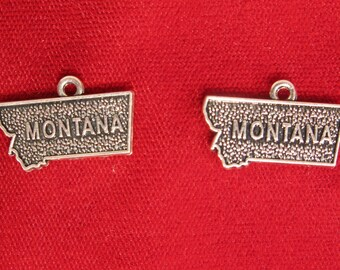 "BULK! 30pc ""Montana"" charms in antique silver style (BC946B)"