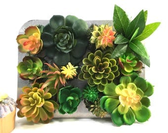 Faux succulent hanging 14 plant arrangement in vintage Comet mini muffin cupcake tin made in U.S.A.y