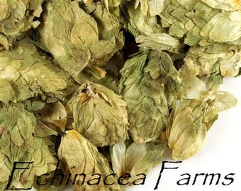 HOPS - WHOLE - Humulus lupulus -Tea Herb Wiccan Dried Dream Pillows