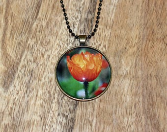 Pendant necklace featuring a photograph an orange tulip