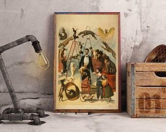 Vintage Poster, Circus, Dog Training, Dog Circus, Tricks, ArtHangar, Poster, Giclée, Print