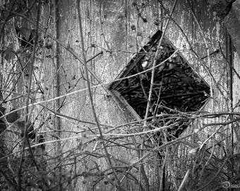 Photograph of a black and white wooden door