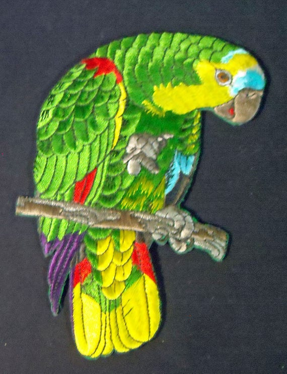 Beautiful Colorful Blue-fronted Amazon Parrot iron on patch for jacket, etc.