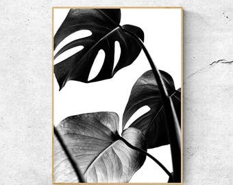 Black And White Monstera, Leaf Prints, Monstera Wall Art, Black and white Wall Art Prints, Monstera Deliciosa, Large wall art Printable