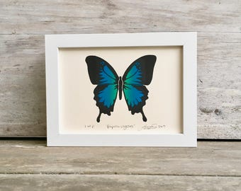 Blue Mountain Swallowtail Linocut Print - Full Color