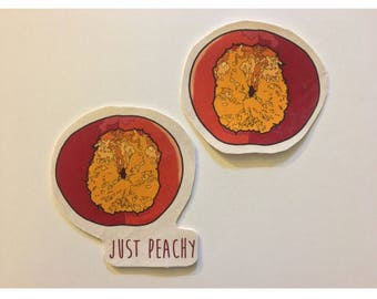 take a bite of peach canvas patch