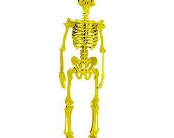 3D Puzzle, Dinosaur Toy, 3D Human Skeleton Puzzle, Recyclable PVC Homo Sapiens Puzzle Toy YELLOW, Eco-Friendly, Skeleton Toy, Human Body Toy