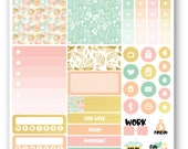 Ready to ship Peach & Mint sampler weekly stickers kit, Suitable for Erin Condren vertical planner, Weekly planner stickers, Mini weekly kit