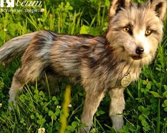 SOLD Ralph Wolf - handmade stuffed realistic animal