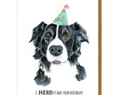 Dog Birthday Card - Border Collie Card - Dog Greeting Card - Border Collie Gifts